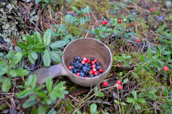 more berries!
